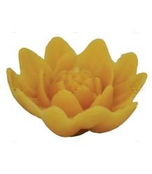 Bloem lotuskaars