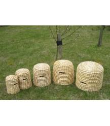 Bijenkorf Holland modellen opgesteld in de boomgaard