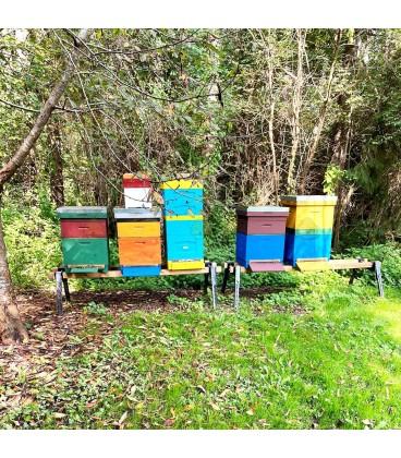 Bokje voor bijenkasten (set van 2 onderstellen) zwart gecoat/geschilderd