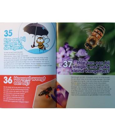 100 kinder vragen, bijen. Door: Bruno Remaut en Bart Vandepoele